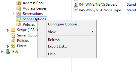 configure_dhcp_options